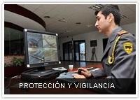 protección y vigilancia vettonia empresa seguridad