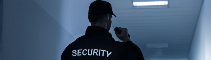 servicio de vigilante de seguridad en ibiza