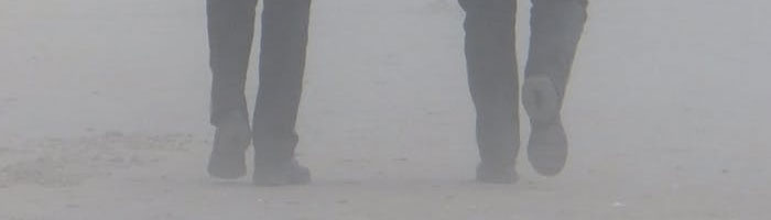 Servicios devigilantes de seguridad en Cáceres